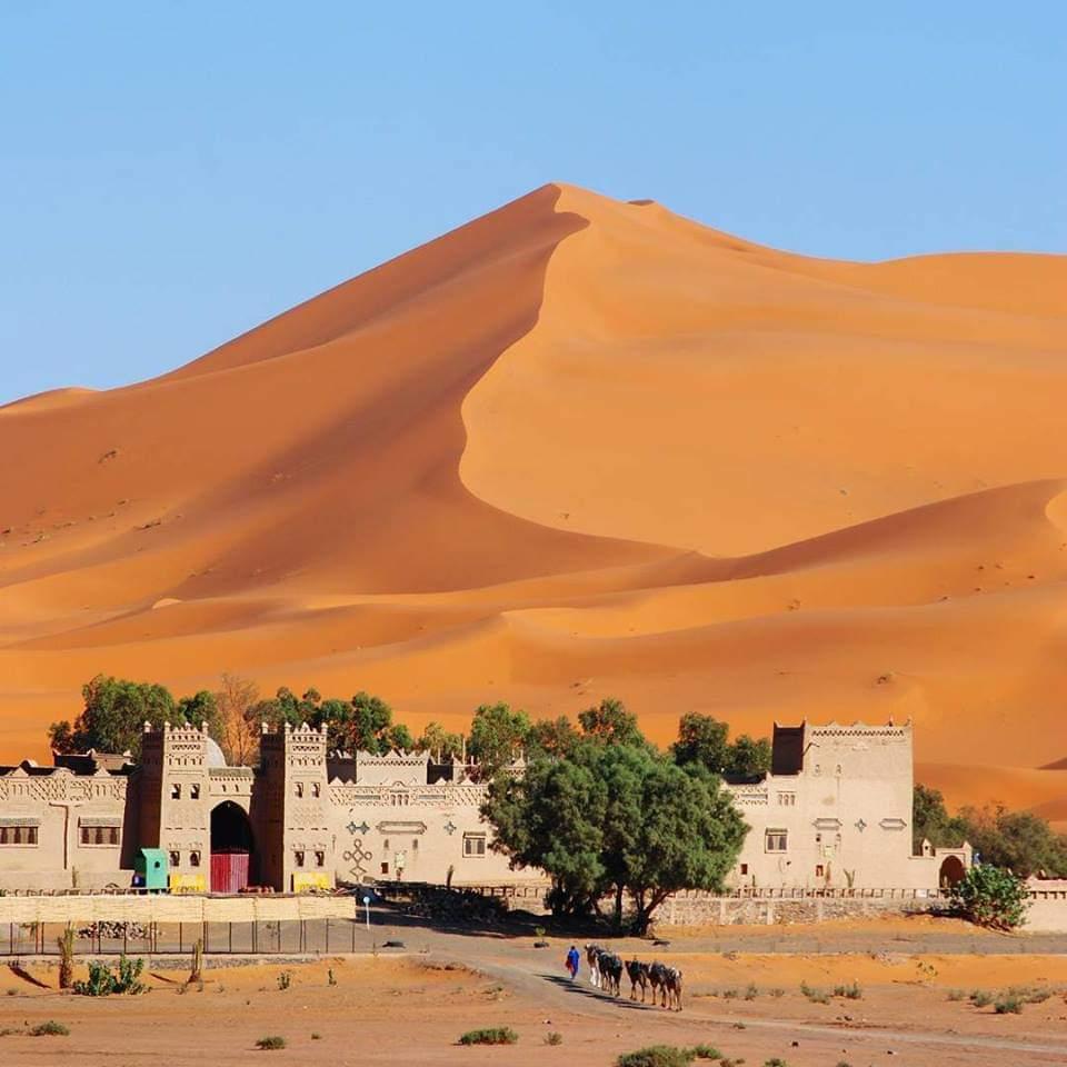Le Maroc, toujours résilient.