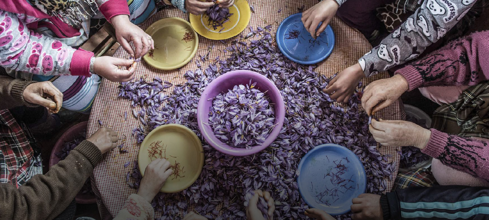 Le nouveau jardin (secret?) d' YSL à Marrakech