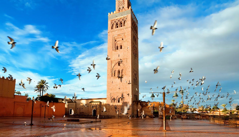 Eductour de 15 agents de voyages anglais au Maroc