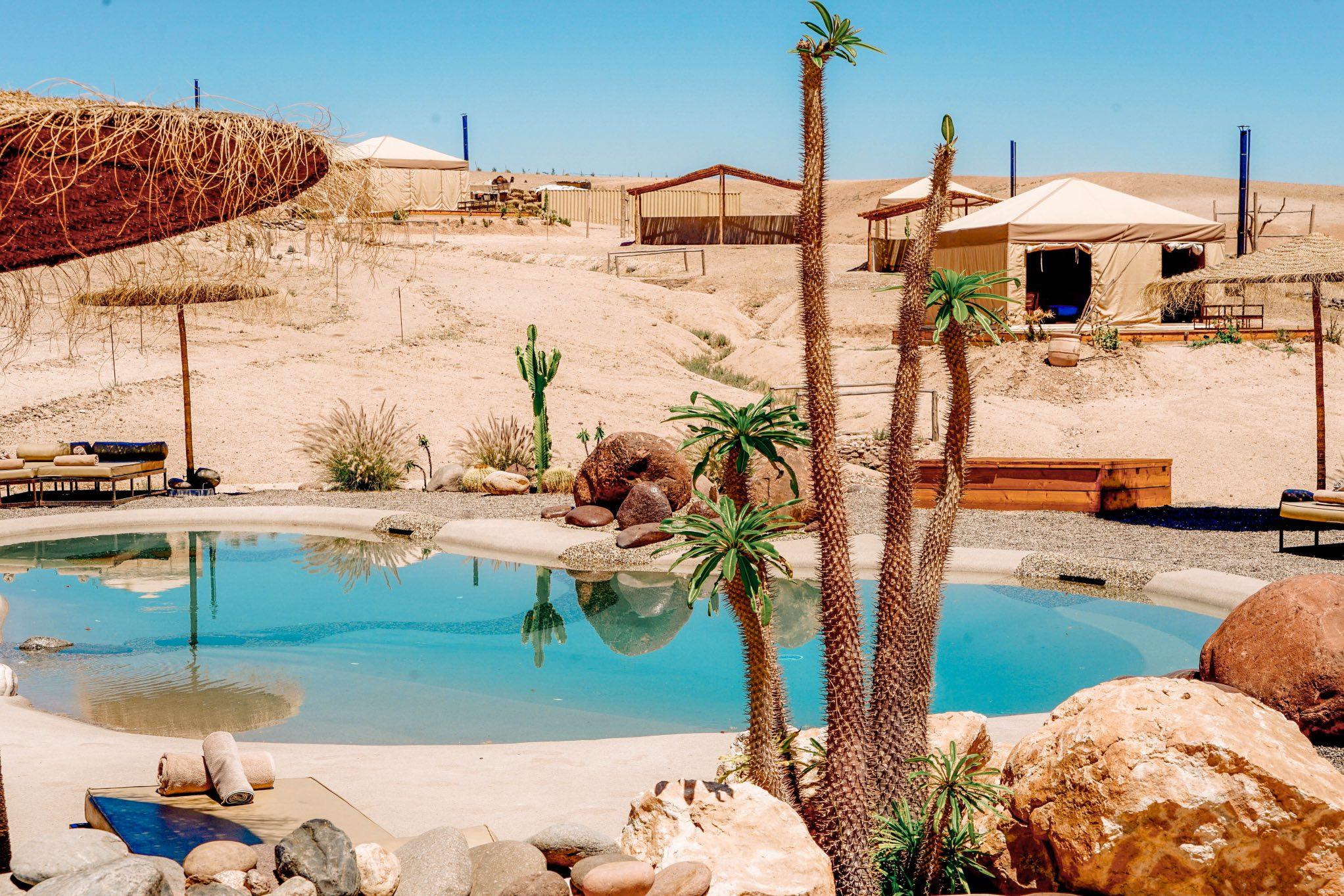 Grazing Table brunch dans le désert