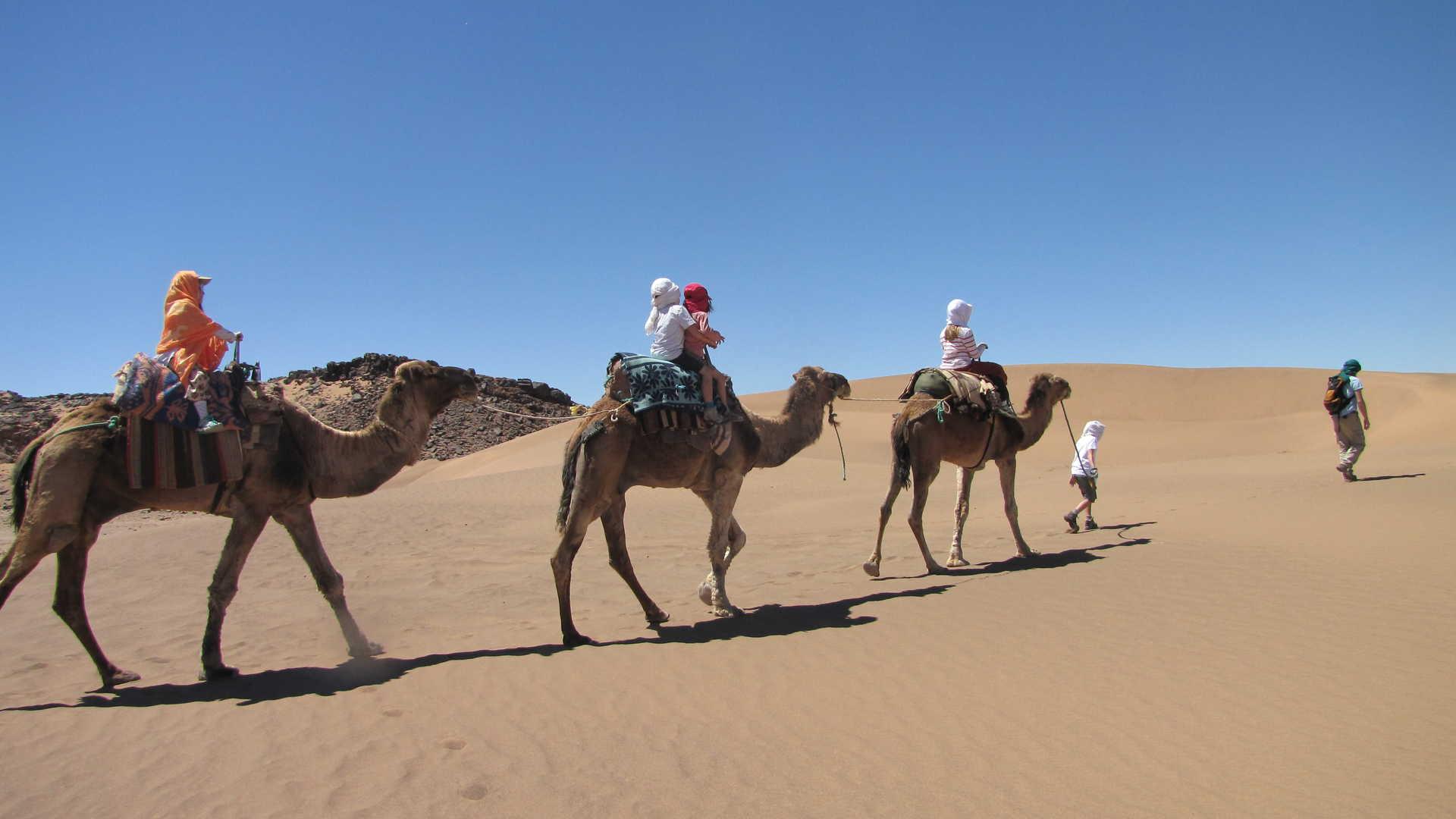 Voyager dans une caravane chamelière dans le désert